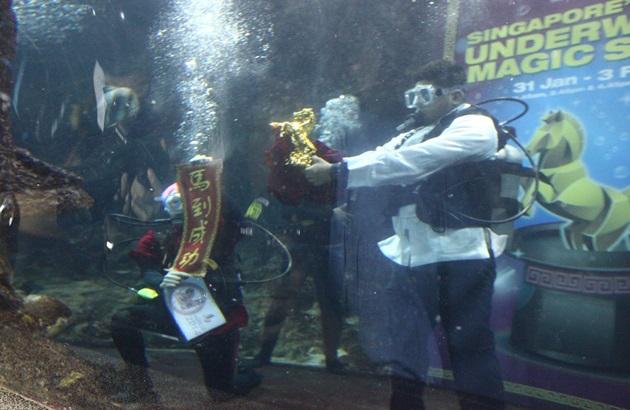海底世界首呈献 br />海底魔术迎马年