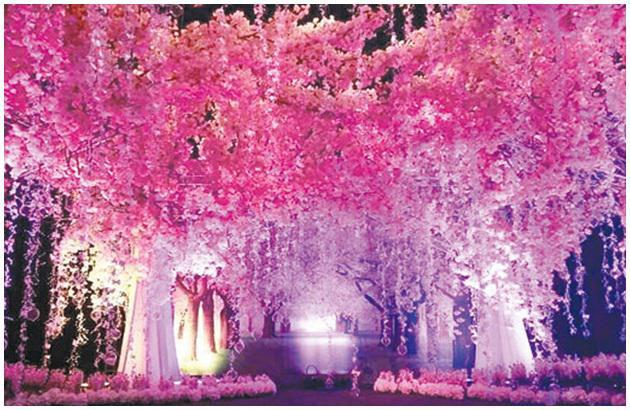 舞台上有樱花树,花海和玫瑰花道